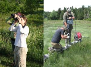 Bird Watching and Scientific Research on Public Lands