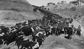Westward Expansion, Photo Courtesy of Montana Moments