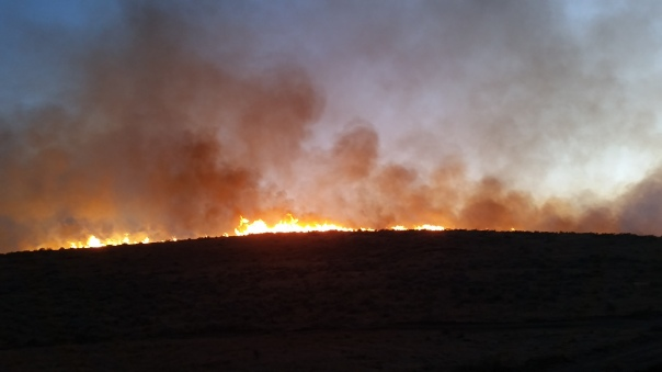 Lime Hill Fire