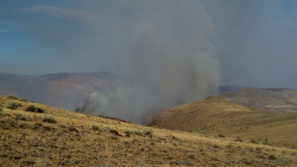 The fire starts blowing up to the north of us while we wait for the go ahead to continue burning out.