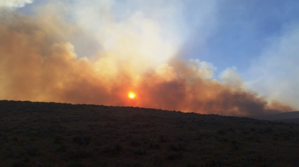 Fire flanks those up on the north end and with the help of the wind starts running south.