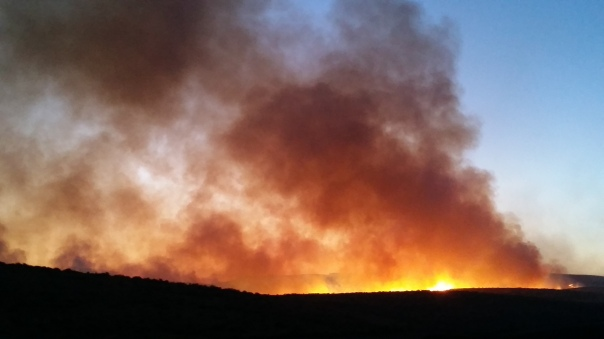 The fire is moving south and cresting the ridge toward us.