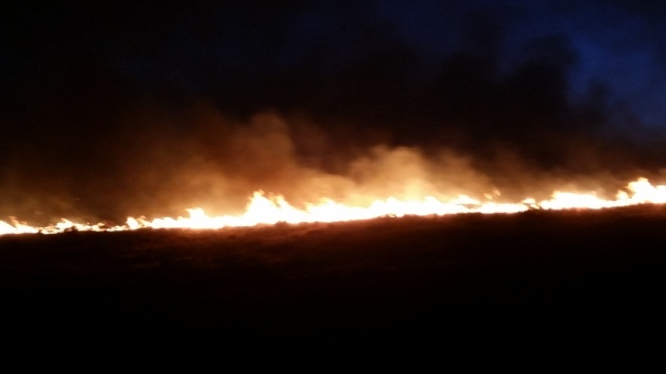 15-20 foot flame lengths on the fire as it crests the hill above us.