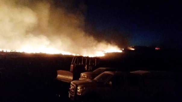Night closes in as the fire continues to move.