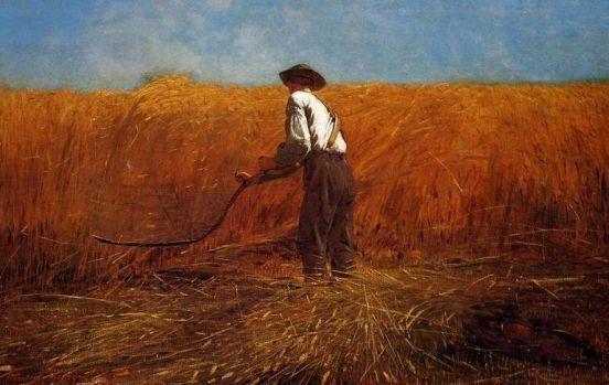 american-farmer